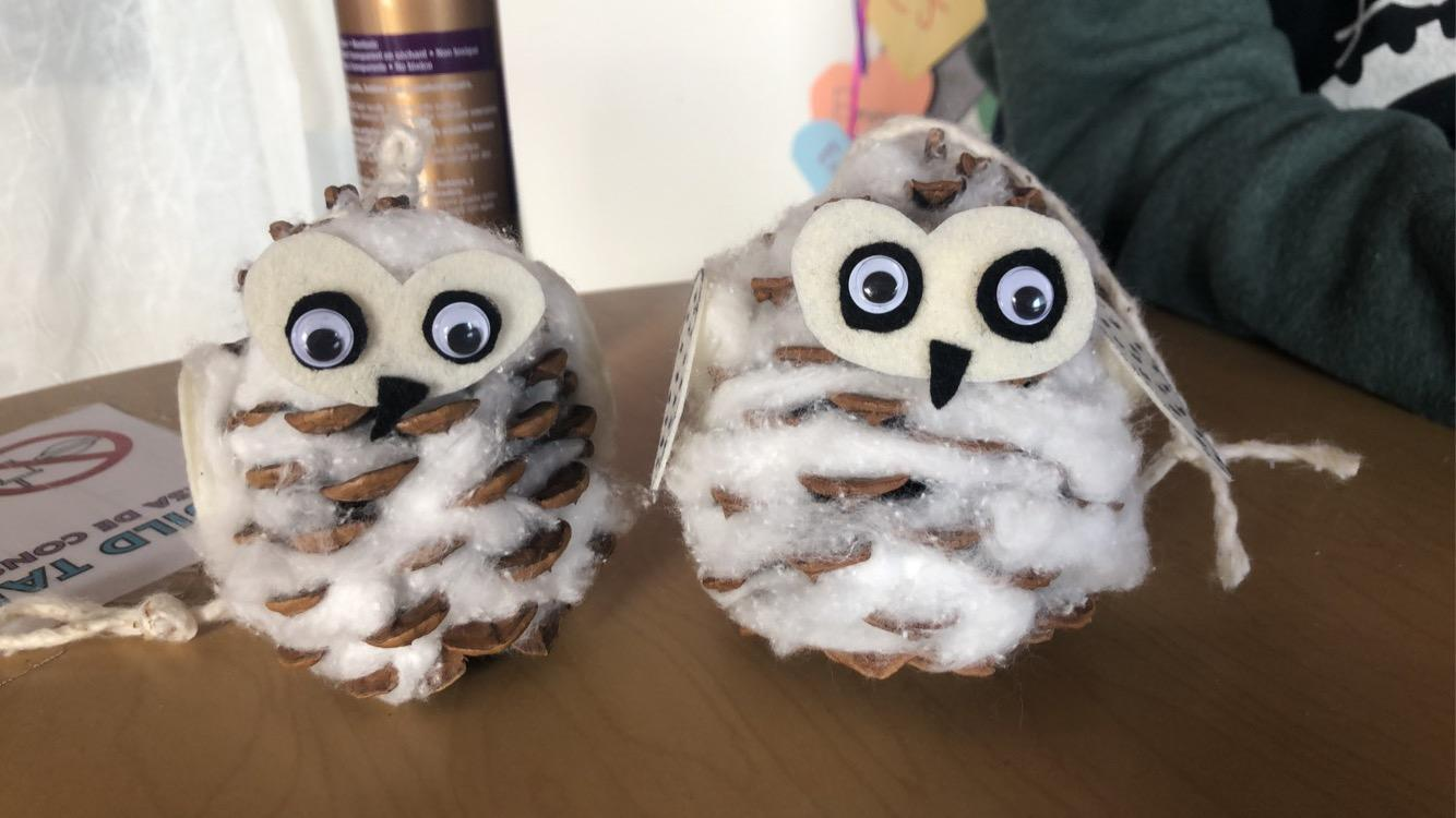 Pinecone Owls from our May Quick Crafts Kit